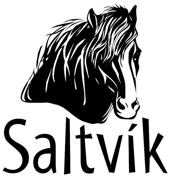 Saltvik Rideferie